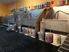 Self serve dog wash in brielle njbrielle dog boutique self serve dog wash solutioingenieria Choice Image